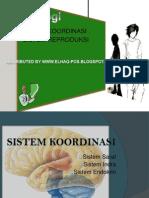 sistem koordinasi&reproduksi