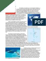Maldives Case Study - 2nd