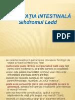MALROTATIA-INTESTINALA