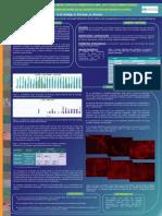 2012 - La ecofisiología de los morfotipos filamentosos 0803, 0914 y 0092 enmascarada por las técnicas convencionales de identificación en fangos activos