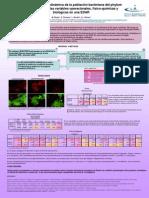 2012 - Relaciones entre la dinámica de la población bacteriana del phyllum proteobacteriaria y las variables operacionales, físico-químicas y biológicas en una EDAR