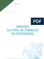 Formação-Professores
