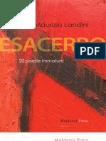 """MAURIZIO LANDINI, """"Esacerbo. 20 poesie immature"""""""