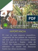 Manejo tecnificado en La Crianza de Cuyes www.peru-cuy.com