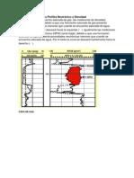 Efectos del Gas en los Perfiles Neutrónico y Densidad