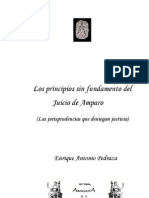 Los Principios Sin Fund Amen To Del Juicio de Amparo - Pedraza