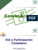 p EIA Participacion Ciudadana