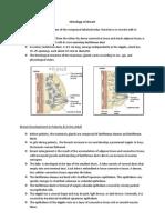Histology of Mammary Glands