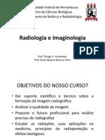 Apresentacao_RAIM_-2.1