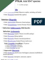 Reptile Classification