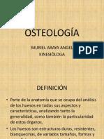 osteologia clase 1