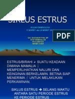 Siklus Estrus