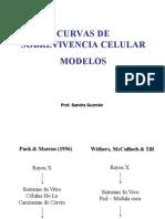 Clase 27-06-2011 Prof. Sandra Guzman Radiobiologia A