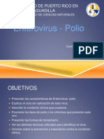 Microbiologia Clinica- Presentacion Power Point Enterovirus Polio