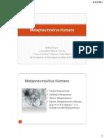 Metapneumovírus Humano pdf