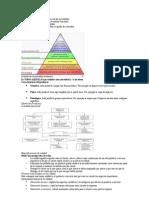 Organización sistemática de las necesidades