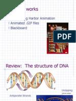 PCR History Pt2[1]