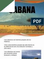 Biomas... Sabana y Tundra