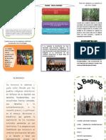Folleto Del Baguazo 1
