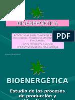 BioenergÉtica Blog