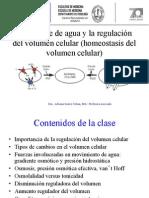4.Transporte de Sustancias Dentro de Los Organismos Vivos II