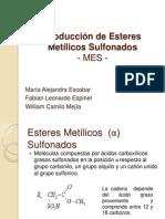 Producción de Esteres Metílicos Sulfonados