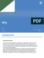 Wily Java Pro Filer (1)