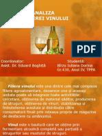 Analiza filierei vinului