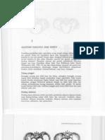 Bab1 Anatomi Panggul Dan Isinya