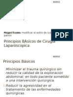 Principios Basicos de Cirugia Laparoscopica