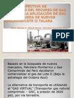 Nueva Perspectiva Gas Loteii