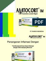 Presentation Amtocort Im