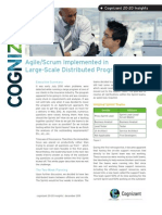 Agile/Scrum Implemented in Large-Scale Distributed Program