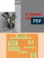 SISTEMA EXCRETOR 97
