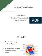 01 Struktur Asas Badan PBSM