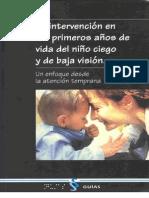 Intervencion en los Primeros años de Vida del niño ciego y de baja visión_Un Enfoque desde la Atención Temprana