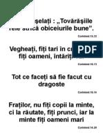 AfisTexteBilice .3
