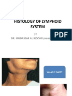 1st Lecture on Lymphoid Histology by Dr. ROOMI