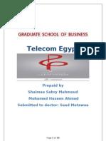 Telecom Egypt Company