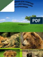 Программа для помощи детям с умственными отклонениями DYD2012 (СергейКузнецов)