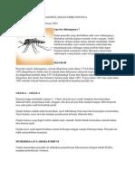 demam cikunguya
