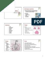 01.Semiologia Respiratoria