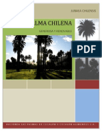 La Palma Chilena