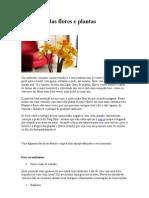 Feng Shui Das Flores e Plantas