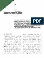 Ceratitis, Morfología apar. reprod. femenino