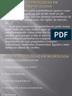 Grandes_Patologias_em_Neuropsicologia[1][1]