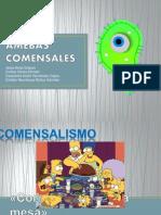 Amebas Com en Sales