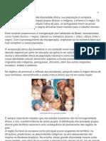 O Brasil é um país com grande diversidade étnica
