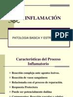 SEMINARIO DE INFLAMACIÓN