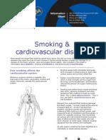 Infosheet Cardiovascular Disease
